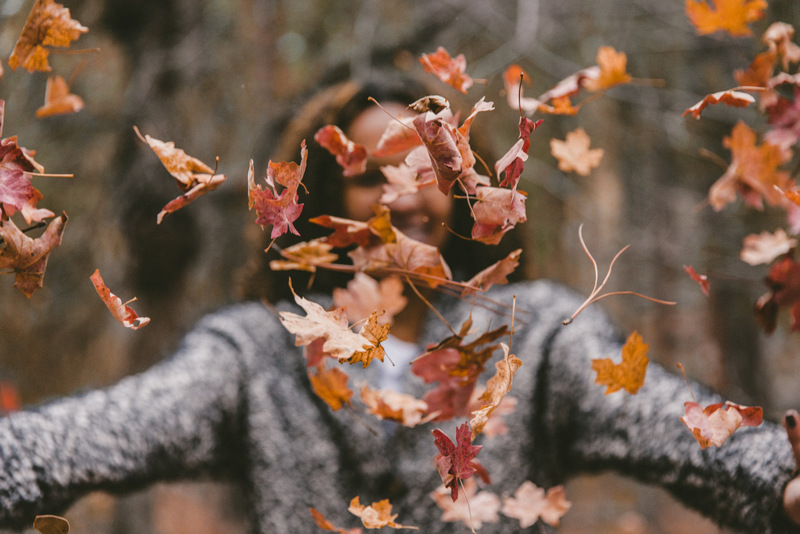woman tossing fall leaves - free autumn stock photo